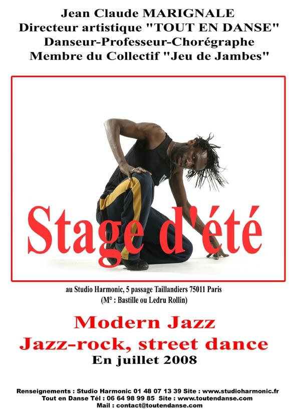 stage-harmonic-juillet-2008-blog.jpg