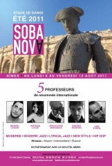 stage-sobanova-nimes-2011-copie.jpg