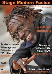 stage-harmonic-16-fevrier-2014.jpg