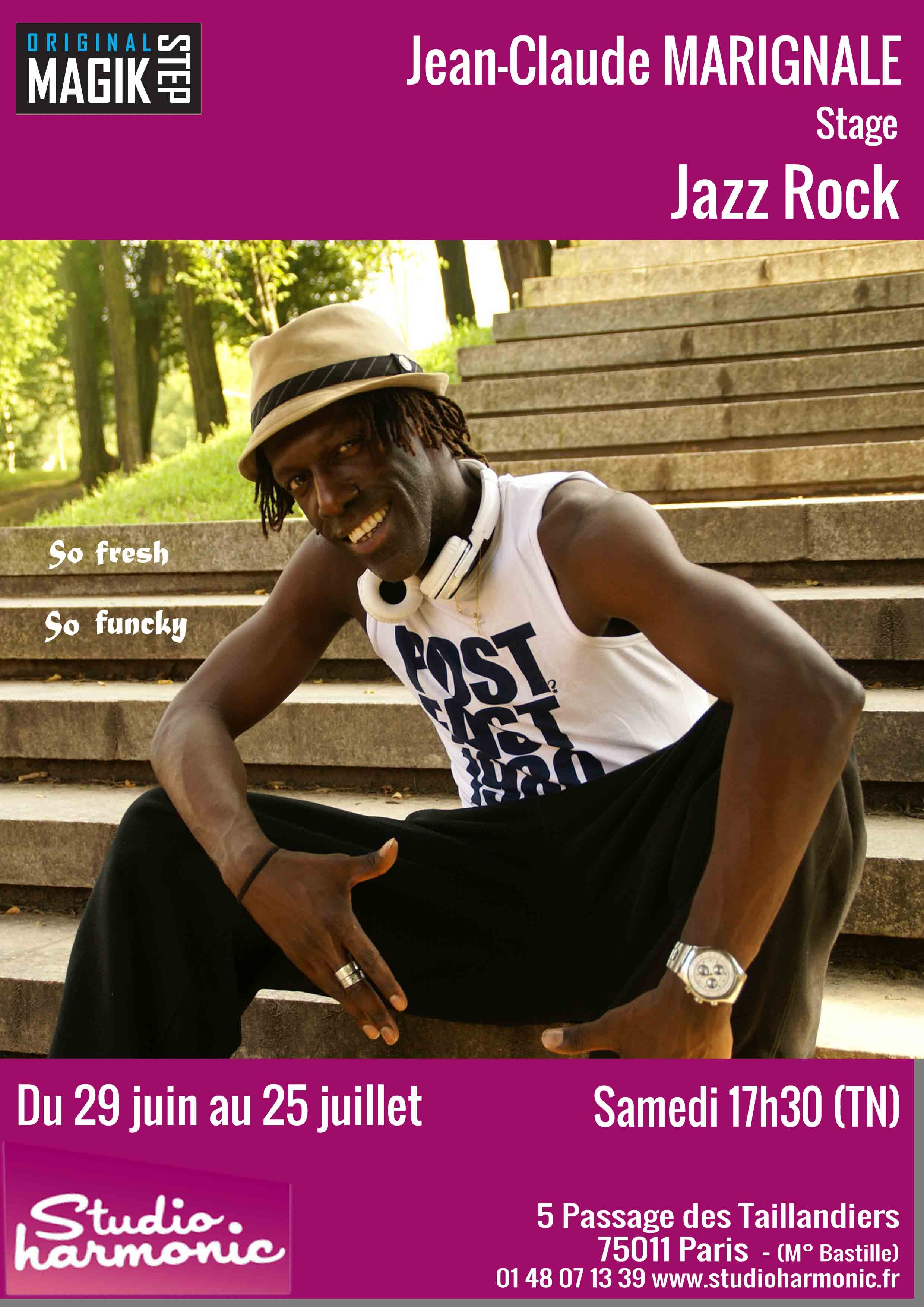 stage-studio-harmonic-studio-du-29-juin-au-25-juillet-2015-jazz-rock_0.jpg
